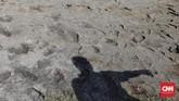 Bekas semburan lumpur dan pasir di lapangan Lapas Palu, pascagempa warga binaan dikumpulkan di lapangan. Namun, gempa susulan yang lebih besar menguncang, dan membuat kepanikan karena tanah mulai amblas dan menyemburkan lumpur pasir. (CNN Indonesia/Adhi Wicaksono)