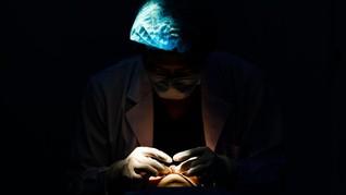 Hymenoplasty, Operasi Keperawanan yang Makin Marak di Inggris