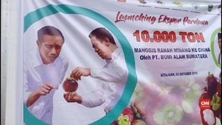 VIDEO : Indonesia Ekspor Manggis ke China