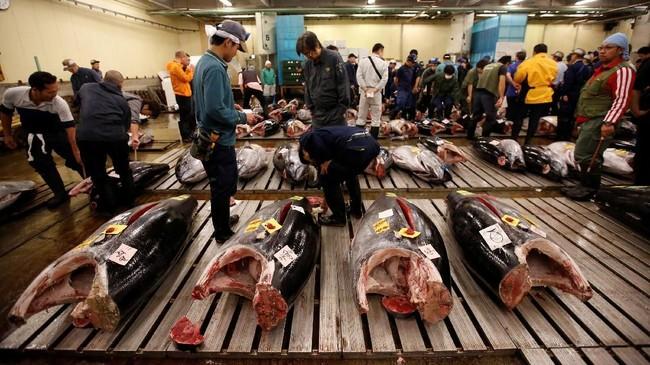 Selain itu, wisatawan juga bisa mencicipi daging ikan segar karena banyak restoran yang menyediakan menu makanan ikan dan produk laut.
