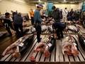 Kisah Pilu Pelelangan Tuna Terakhir di Pasar Tsukiji
