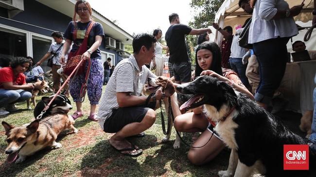 Para penyayang anjing dari berbagai wilayah Jakarta mendatangi tempat pemasangan microchip bagi anjing yang diselenggarakan oleh kelompok pelindung hewan nasional dan internasional di kawasan Kemang, Jakarta Selatan, Sabtu (6/8). (CNNIndonesia/Safir Makki)