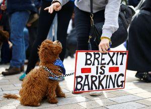 Separuh dari CFO Global Berharap Kesepakatan Brexit Disetujui