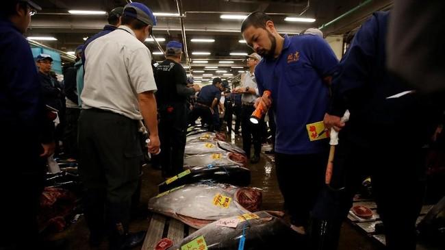 Ratusan tuna segar dan beku diberi label berat dan pelabuhan asal mereka. Tuna-tuna itu ditata dalam gudang berpendingin. (REUTERS/Issei Kato)