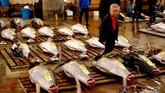 Lelang tuna penuh 'pilu' digelar di Pasar Tsukiji, Tokyo, Jepang, pada Sabtu (6/10) dini hari. (REUTERS/Kim Kyung-Hoon)