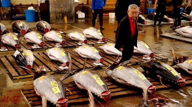 Rekor dalam Lelang Pertama Pasar Ikan Tsukiji Baru Tahun 2019