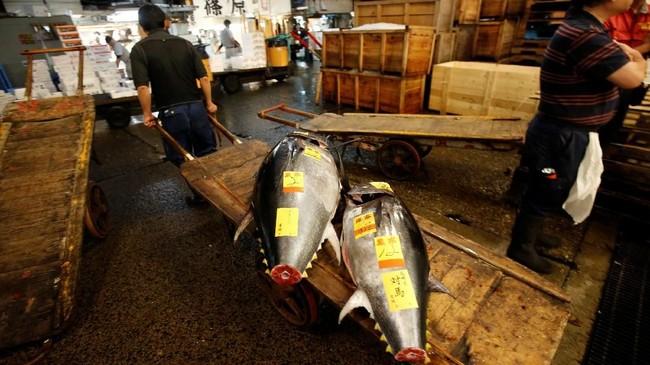 Di pagi itu, para pedagang masuk ke sebuah gudang pelelangan. Ritual pelelangan ini sangat penting untuk dunia kuliner Tokyo. (REUTERS/Issei Kato)