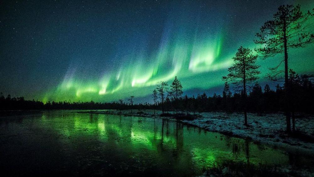 Aurora Borealis(Cahaya Utara) terlihat di atas langit dekat Rovaniemi, di Lapland, Finlandia. Aurora Borealis adalah salah satu fenomena alam yang paling spektakuler dan muncul di langit sekitar 200 kali setiap tahun. (REUTERS/Alexander Kuznetsov)