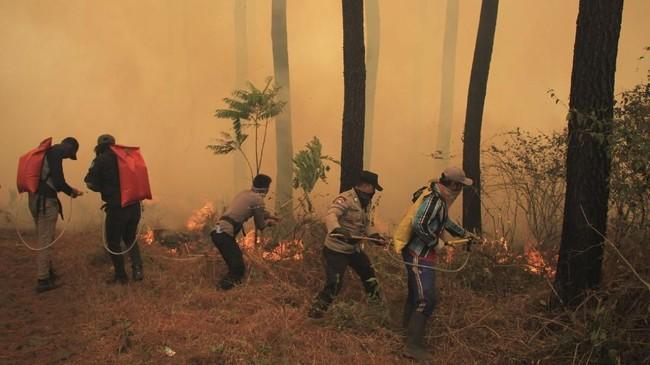 Sejumlah petugas gabungan berusaha memadamkan api yang membakar kawasan hutan di lereng Gunung Ciremai, Kuningan, Jawa Barat, Rabu (3/10). ANTARA FOTO/Dedhez Anggara