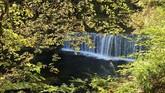 Memiliki bentang alam hijau yang luas membuat Swiss memiliki banyak destinasi wisata musim gugur, salah satunya di air terjun yang berada di kawasan Neuchatel ini. (REUTERS/Denis Balibouse)