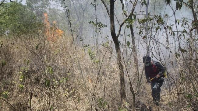 Proses pemadaman terkendala dengan lokasi kebakaran yang berada di perbukitan berbatu dan juga alang-alang mengering yang mudah terbakar. ANTARA FOTO/M.Taufik