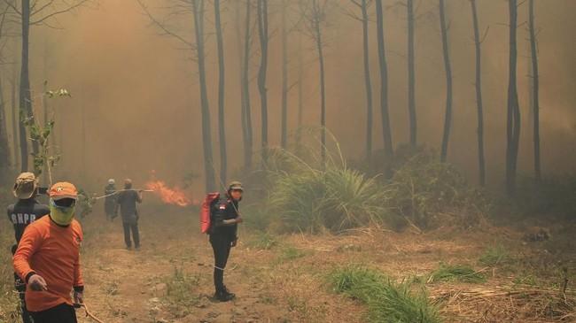 Kebakaran hutan di Gunung Ciremai meluas ditaksir hingga mencapai 1.000 hektar dan belum berhasil dipadamkan. ANTARA FOTO/Dedhez Anggara