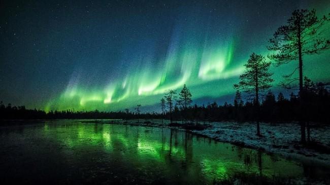 Aurora Borealis terlihat di langit dekat Rovaniemi di Lapland, Finlandia. (Reuters/Alexander Kuznetsov)