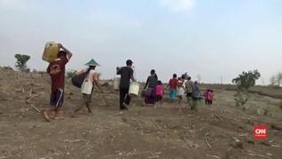 VIDEO: Kekeringan di Ngawi, Satu Sumur Dipakai 250 Keluarga