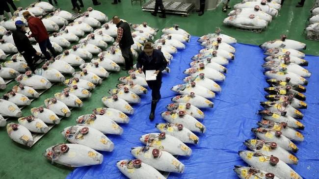 Pasar pengganti ini mulai beroperasi beberapa hari setelah pasar Tsukiji yang terkenal menutup pintunya sejarah 83 tahunnya. (REUTERS/Issei Kato)