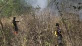 Kepala Pelaksana Badan Penanggulangan Bencana Daerah (BPBD) Kabupaten Kuningan, Agus Mauludin menyatakan api terus merambat dan saat ini kebakaran sudah menghanguskan 1.000 hektare kawasan hutan. ANTARA FOTO/M.Taufik