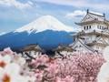 Lima Destinasi yang Wajib Anda Kunjungi di Jepang