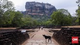 Sigiriya berlokasi di dalam segitiga budaya Sri Lanka yang terdiri dari tiga lokasi yaitu Anuradhapura, Kandy, dan Pollonaruwa. (CNN Indonesia/Safir Makki)