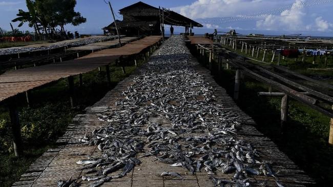 Penduduk Barussehari-hari bekerja sebagai nelayan dan pedagang. (ANTARA FOTO/Sigid Kurniawan).