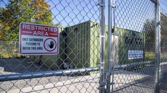 Ganja-ganja itu disimpan di sejumlah ruang di Niagara College, Ontario, Kanada. (REUTERS/Carlos Osorio)