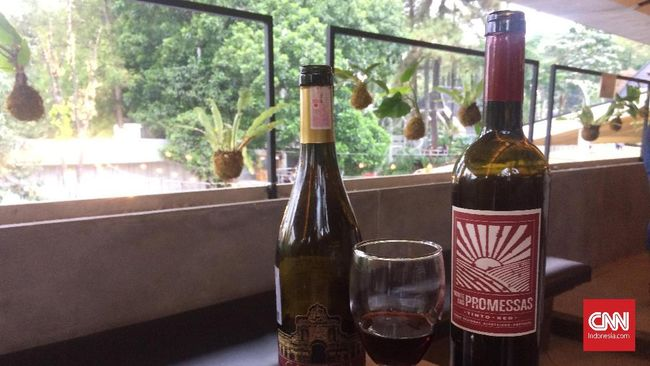 83+ Gambar Anggur Merah Indonesia Paling Keren