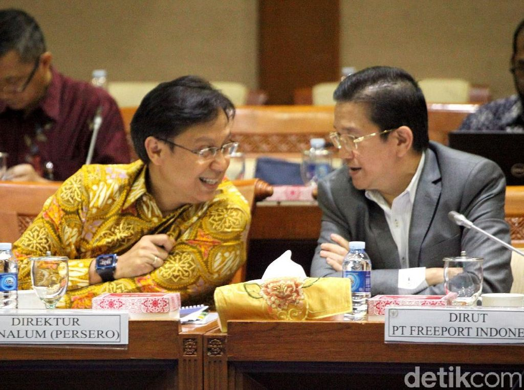 Komisi VII DPR memanggil Direktur Jenderal Mineral dan Batubara (Minerba) Kementerian ESDM Bambang Gatot, Direktur Utama PT Inalum Budi Gunadi Sadikin, dan Direktur Eksekutif PT Freeport Indonesia (PTFI) Tony Wenas siang ini, Jakarta, Rabu (17/10/2018).