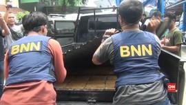 VIDEO: 250 Kilogram Ganja Kering Berhasil Diamankan