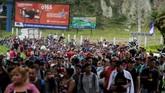 Lebih dari tiga ribu imigran berkumpul di perbatasan Honduras, bersiap menerobos perbatasan Amerika Serikat demi kehidupan yang lebih baik di negara pimpinan Donald Trump itu. (Reuters/Jorge Cabrera)