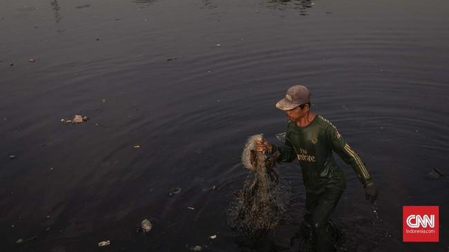Aliran sungai Bekasi terbentang dari hulu Sungai Cikeas dan Sungai Cileungsi, Kabupaten Bogor. Pertemuan kedua sungai itu membentuk Kali Bekasi yang mengalir hingga laut di kawasan Cikarang, Kabupaten Bekasi. (CNN Indonesia/Adhi Wicaksono)