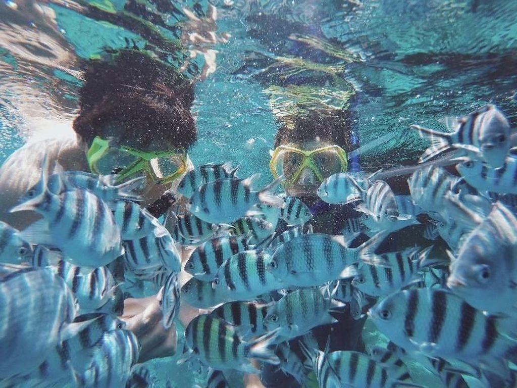 Pantai yang Indah Itu Ada di Utara Pulau Jawa
