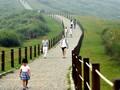 Musim Semi, Waktu Terbaik Berlibur ke Taiwan