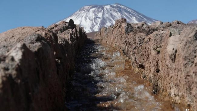 Mereka beranggapan bahwa baik Pemerintah Chile ataupun perusahaan tak tahu pasti soal kondisi air asin di Salar. (REUTERS/Ivan Alvarado)