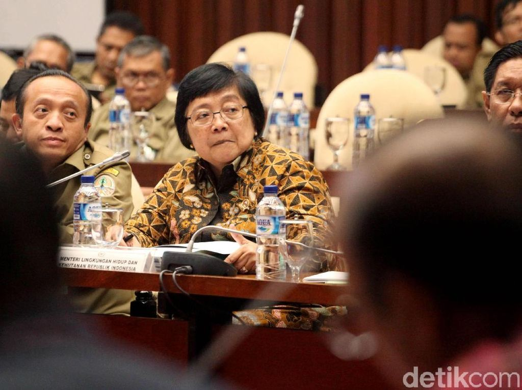 Raker tersebut dipimpin oleh Ketua Komisi IV Eddy Probowo dan membahas mengenai isu terkini, salah satunya adanya gajah yang masih berkeliaran dan masuk ke rumah penduduk di Pelalawan Riau.