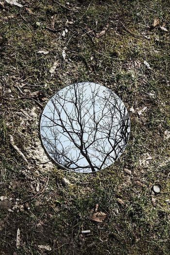 Kreatif! Bermodal Cermin Bulat Ciptakan Semesta Abstrak