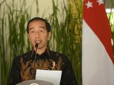 Resah CAD Parah, Ini yang Akan Dilakukan Jokowi