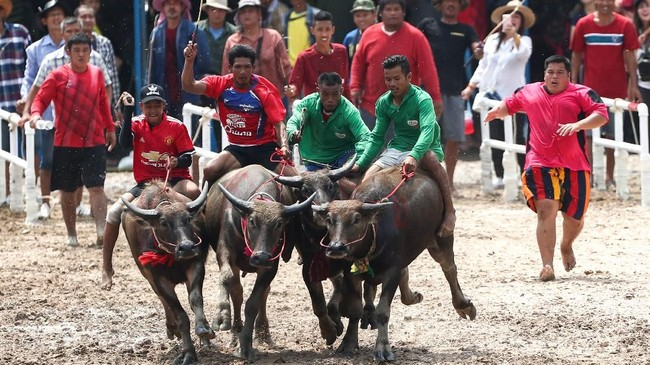 Para joki harus mengendarai kuda mereka melintasi rute sepanjang kurang lebih 200 meter yang berlokasi 80 kilometer di tenggara Bangkok. (REUTERS/Athit Perawongmetha)