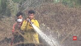 VIDEO: Dua Hektare Lahan Gambut di Aceh Barat Dilalap Api