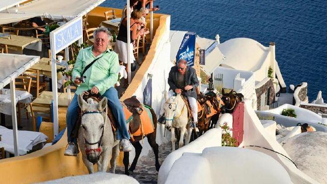 Ditunggangi Turis Obesitas, Keledai Santorini Sakit Punggung