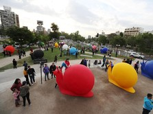 Wah, Ibukota Chile Kini Dipenuhi Hewan Liar