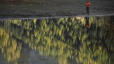 Menjelang musim gugur, pepohonan yang tumbuh di sekitar danau bakal berubah warna menjadi kekuningan, sehingga pemandangan di sana bak lukisan Monet.