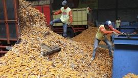 Buwas Enggan Disalahkan, Meski Impor Jagung Tak Maksimal