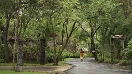 Meski Ada Zero Dollar Tour, China Masih Rekomendasikan Bali
