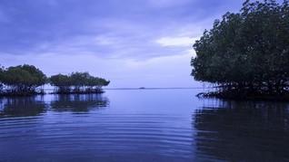 Bali Jadi Destinasi Wisata Favorit Para Pekerja Digital