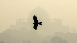 FOTO: New Delhi Dikepung Polusi