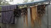 Perdagangan rambut ini sebenarnya sudah ada sejak bertahun-tahun lalu. Namun dalam beberapa dekade terakhir, Myanmar sudah mulai terbuka ke dunia luar setelah orang-orangnya paham peluang ekonomi. (REUTERS/Ann Wang)