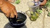 Pemeran Kebo-keboan meracik minyak dan cat untuk menghitamkan tubuh mereka. (ANTARA FOTO/Budi Candra)