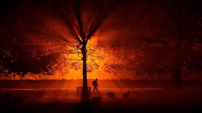 Seorang pria dengan obor berjalan menelusuri taman membelah malam di Athboy, Irlandia. (Reuters/Clodagh Kilcoyne)