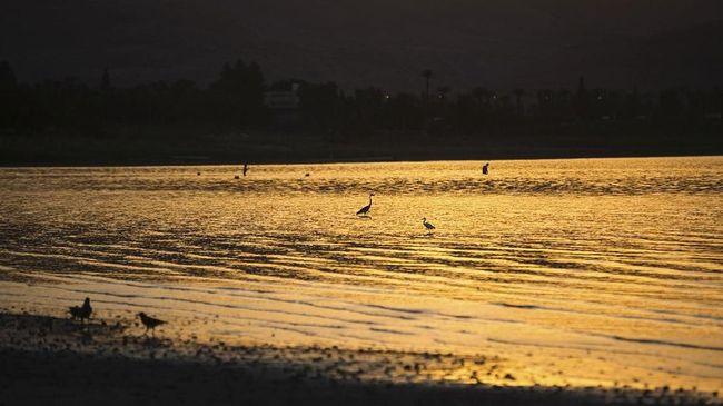 Mengenal 'Front', Fenomena Air Laut Dua Warna di Selat Madura