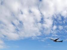 Salim Group Bikin Bandara di Bintan, Seberapa Besar?