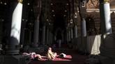 Pada tahun 2014, ada isu penggalian makam Nabi yang akan dilakukan oleh Pemerintahan Arab Saudi.